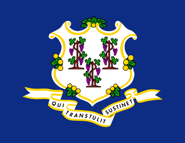 Connecticut CT State Flag