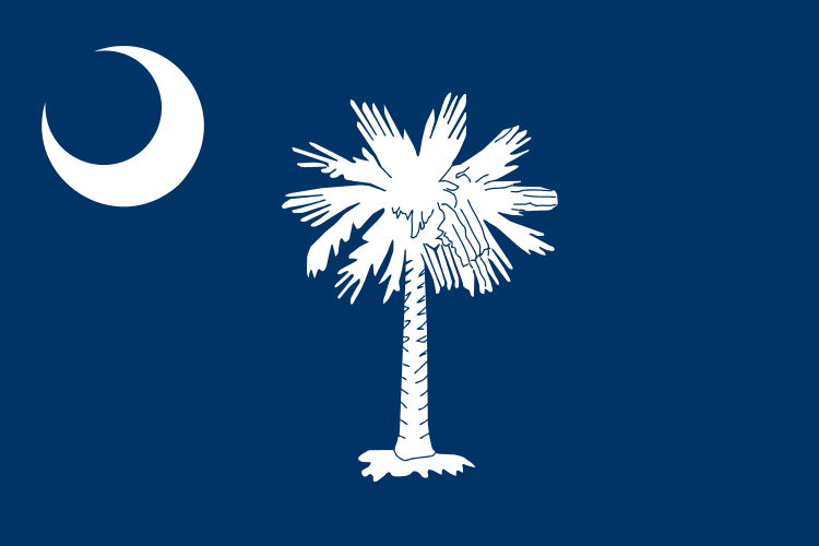 South Carolina SC State Flag