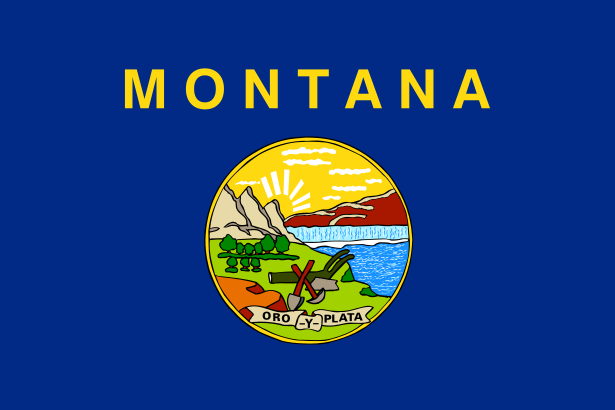 Montana MT State Flag