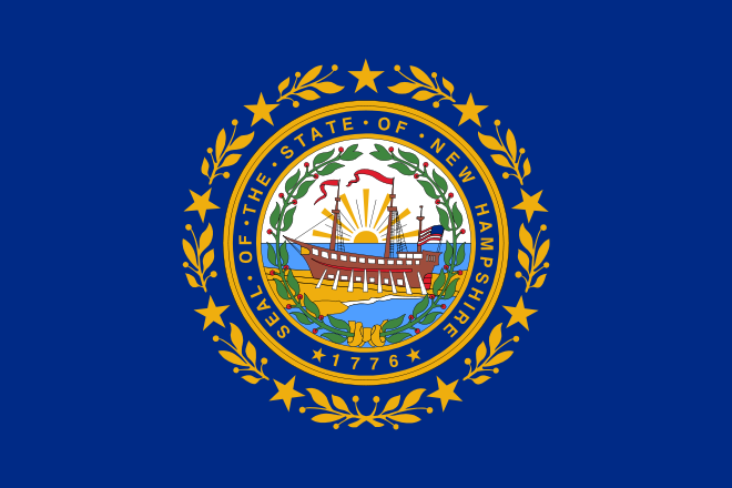 New Hampshire NH State Flag