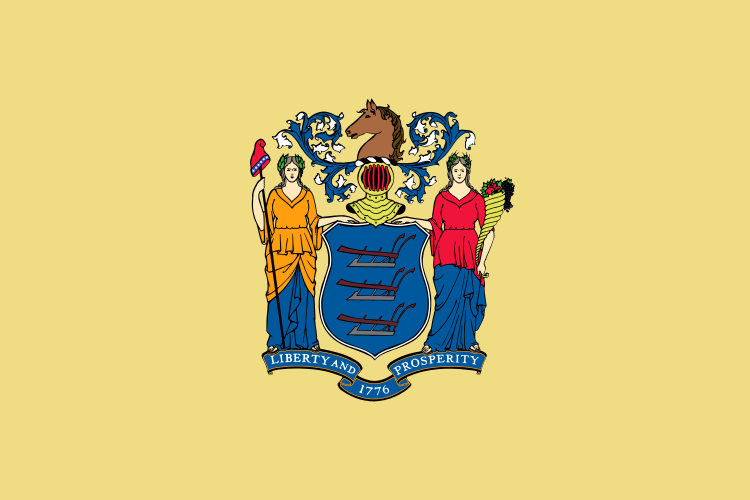 New Jersey NJ State Flag